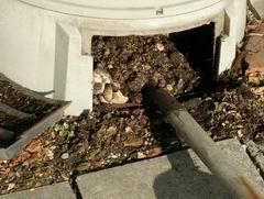 生ゴミ堆肥090312-1
